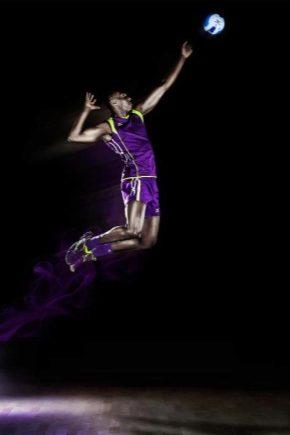 Волейбольні кросівки Mizuno