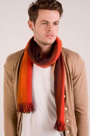 Кашне-шарф і його відмінності від звичайного шарфа