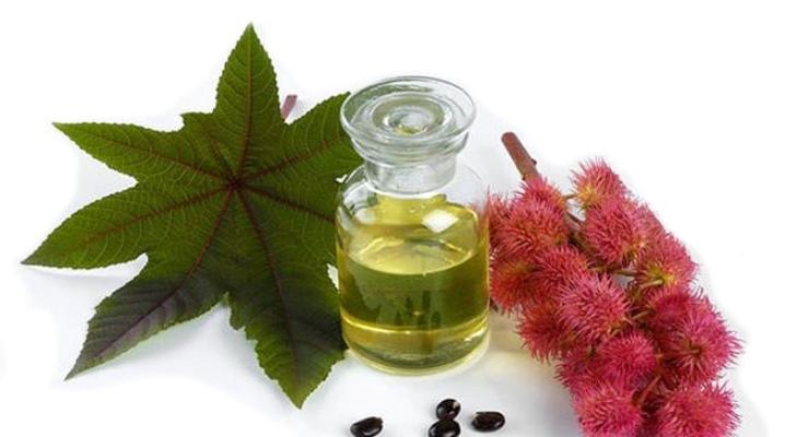 Властивості касторової олії для волосся