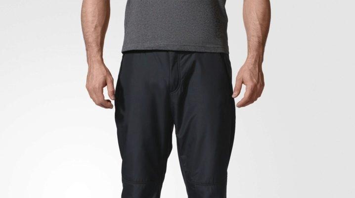 Чоловічі зимові штани